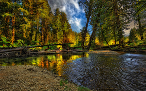 river, forest, природа, Nature, landscape, autumn, nice, beautiful, пейзаж, ...