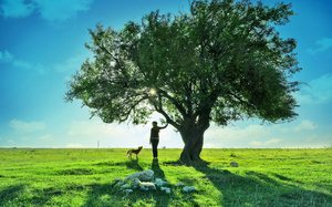 landscape, teen, clouds, девочка,, дерево, Dog, girl, tree, nature, собака, ...
