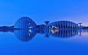 evening, сингапур, малайзия, reflection, singapore, Malaysia, gardens by the bay