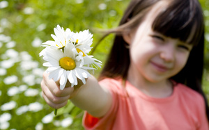 Romantic little girl , happiness, children, beautiful, smile, cute, rose, flower, sunflower, child
