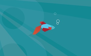 Windows 8, default, рыбка, minimal