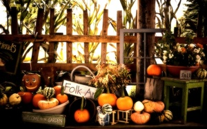 Fall, pumpkins, autumn, halloween